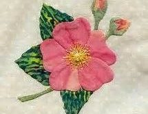 25 different wild flower quilt.에 대한 이미지 결과