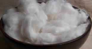 White Raw English Angora Wool from Bun Bun & Jelly Bean.  This fiber is so soft ...