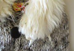 nikki gabriel: Raw Wool