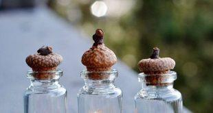 Artikel ähnlich wie Giftpilz-Terrarien - Miniatur-Pilze - Gefilzte Wolle - Botanisches Dekor ...